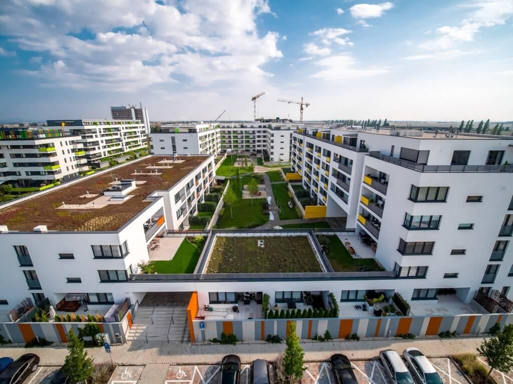 zelene_strechy
